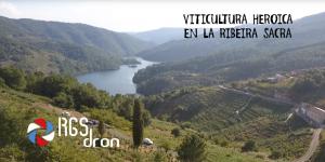 Viticultura heroica RGSDron